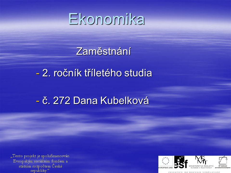Ekonomika Zaměstnání - 2. ročník tříletého studia - č. 272 Dana Kubelková