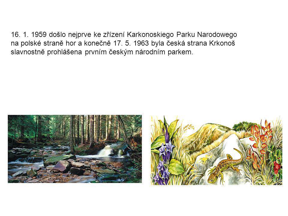 Národní park Krkonoše Krkonošský národní park se rozprostírá v Polsku a zároveň i v Česku. Z administrativního hlediska je jeho velká část na území bý