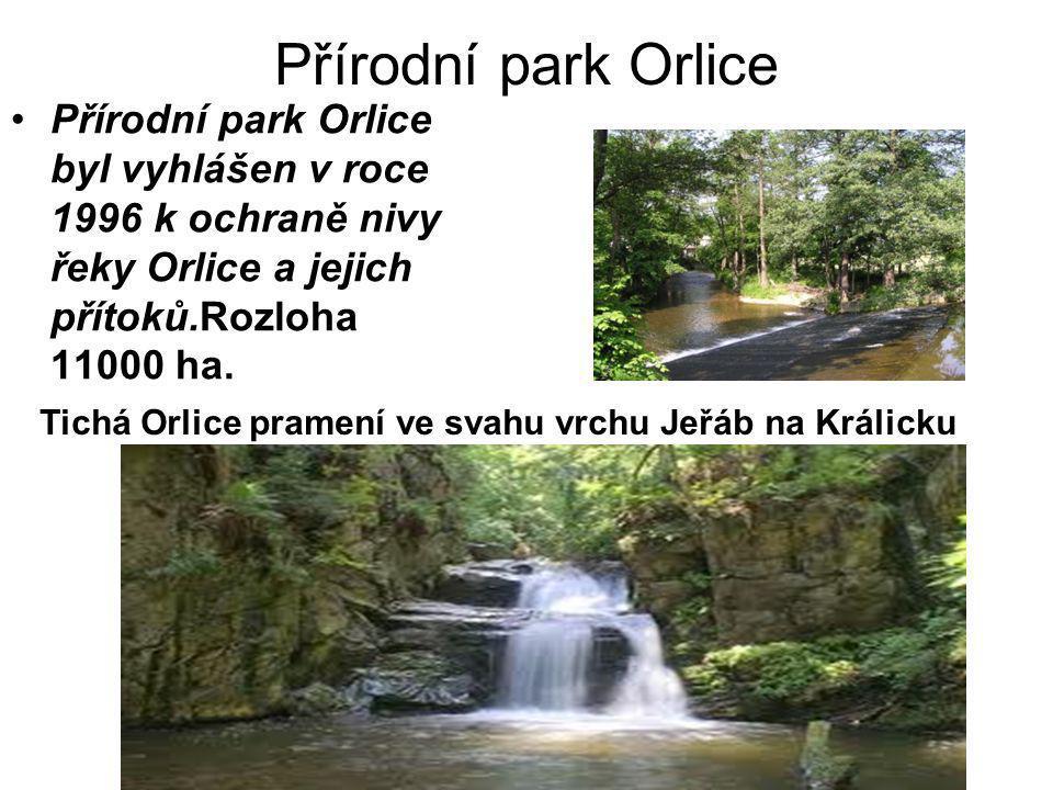 Přírodní park Orlice •Přírodní park Orlice byl vyhlášen v roce 1996 k ochraně nivy řeky Orlice a jejich přítoků.Rozloha 11000 ha.