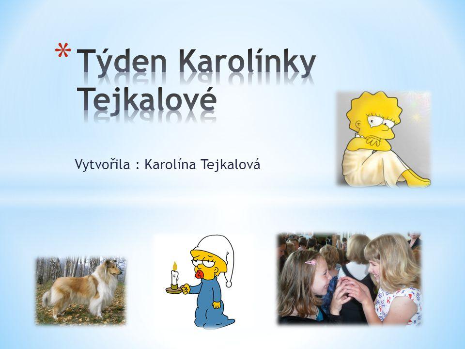Vytvořila : Karolína Tejkalová