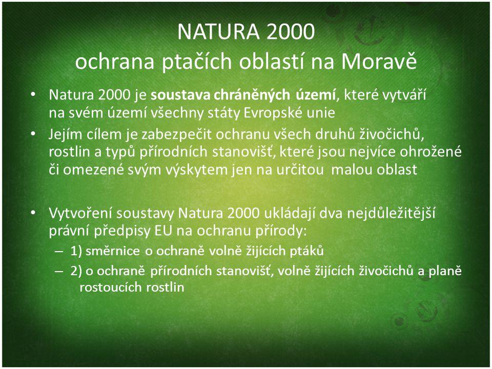 NATURA 2000 ochrana ptačích oblastí na Moravě • Natura 2000 je soustava chráněných území, které vytváří na svém území všechny státy Evropské unie • Je