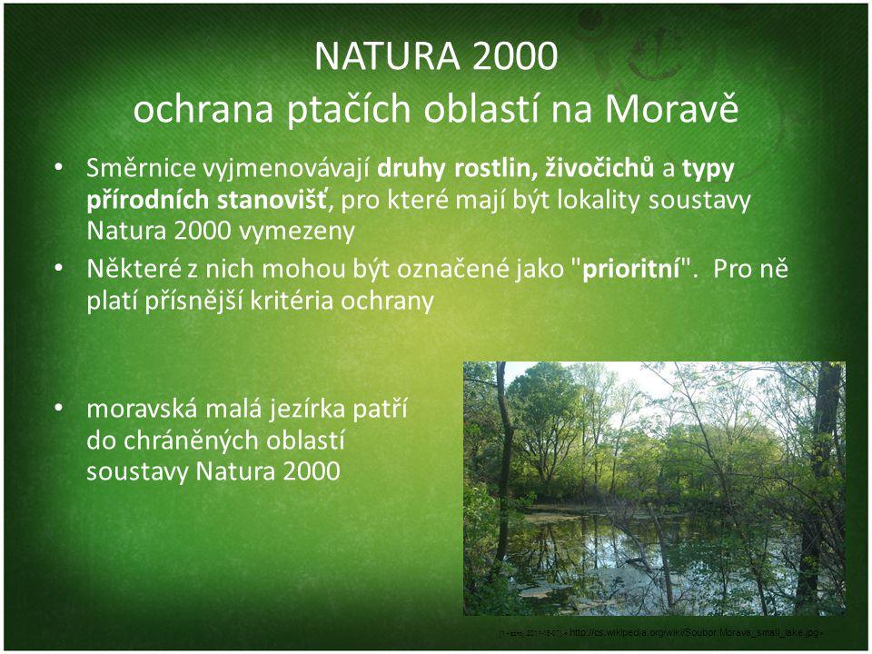 NATURA 2000 ochrana ptačích oblastí na Moravě • Směrnice vyjmenovávají druhy rostlin, živočichů a typy přírodních stanovišť, pro které mají být lokali