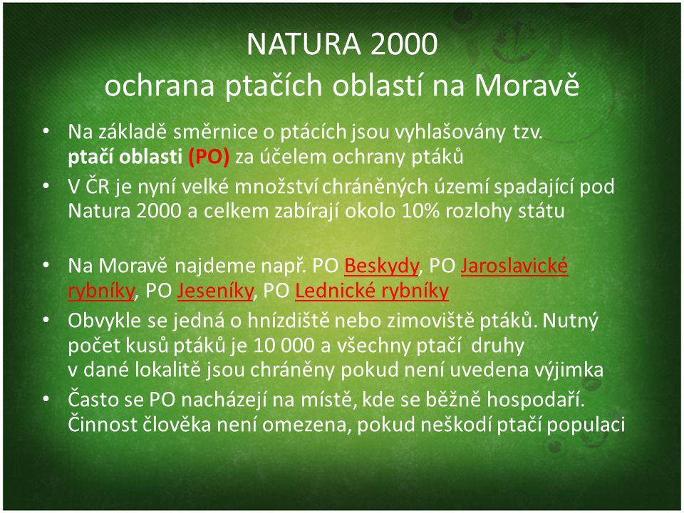 NATURA 2000 ochrana ptačích oblastí na Moravě • Na základě směrnice o ptácích jsou vyhlašovány tzv. ptačí oblasti (PO) za účelem ochrany ptáků • V ČR