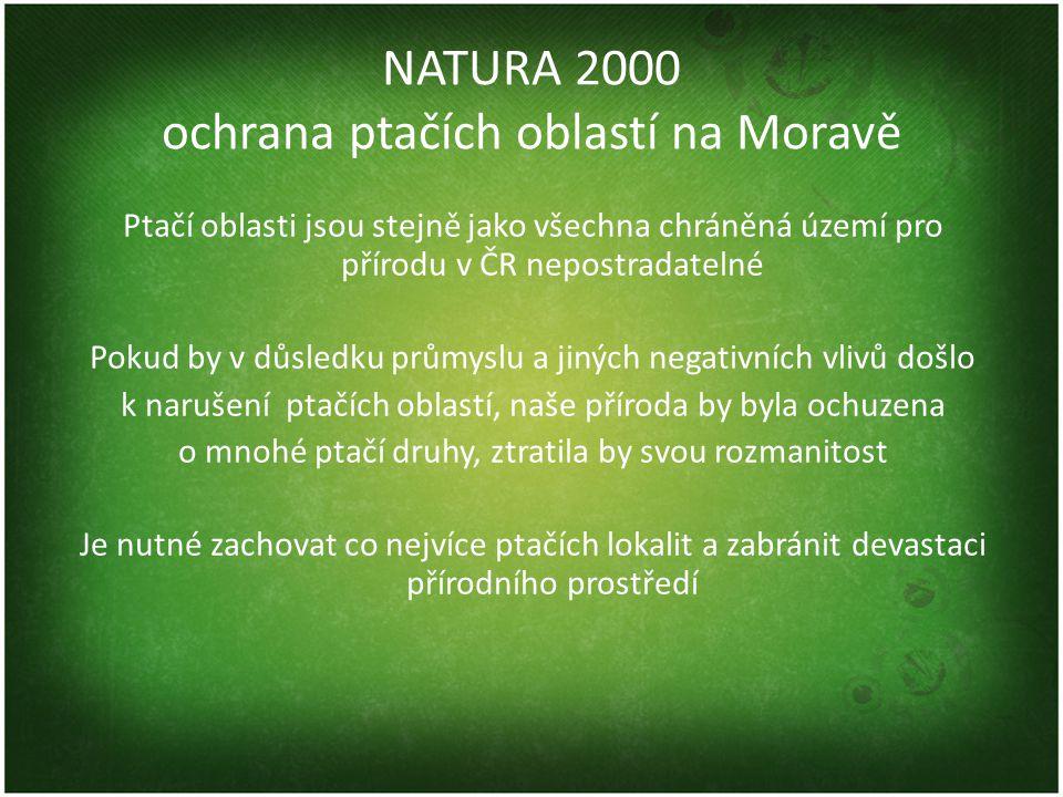 NATURA 2000 ochrana ptačích oblastí na Moravě Ptačí oblasti jsou stejně jako všechna chráněná území pro přírodu v ČR nepostradatelné Pokud by v důsledku průmyslu a jiných negativních vlivů došlo k narušení ptačích oblastí, naše příroda by byla ochuzena o mnohé ptačí druhy, ztratila by svou rozmanitost Je nutné zachovat co nejvíce ptačích lokalit a zabránit devastaci přírodního prostředí