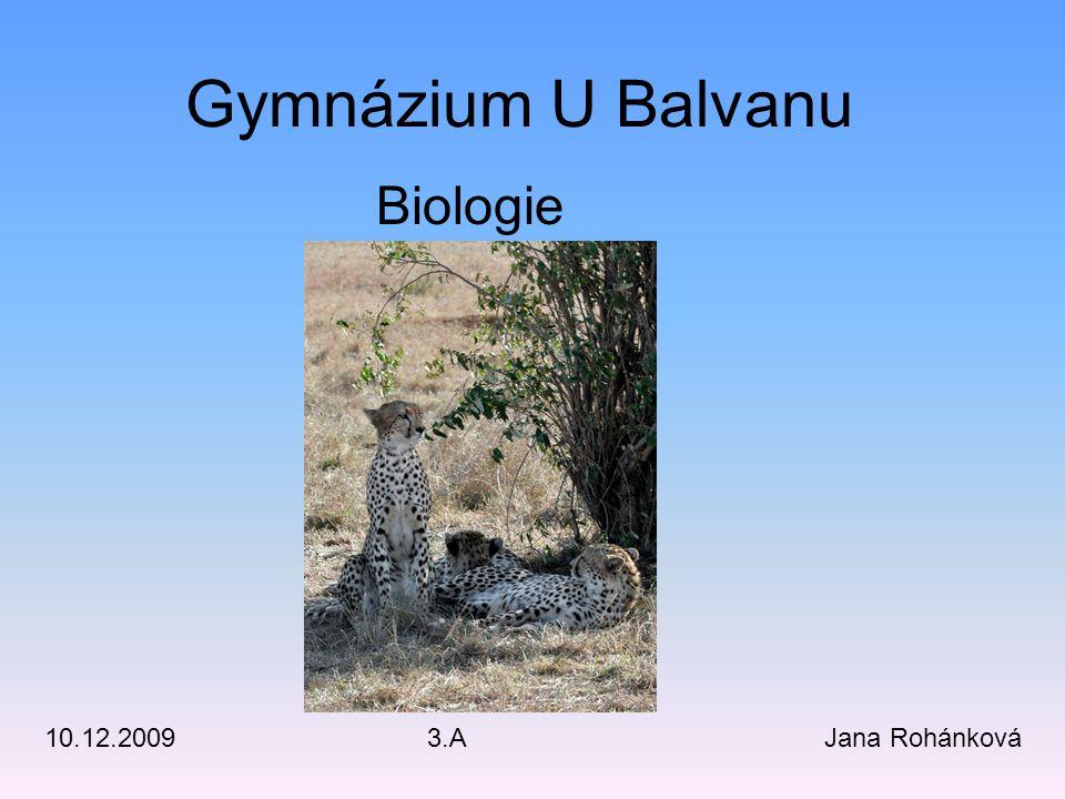 Gymnázium U Balvanu Jana Rohánková3.A10.12.2009 Biologie