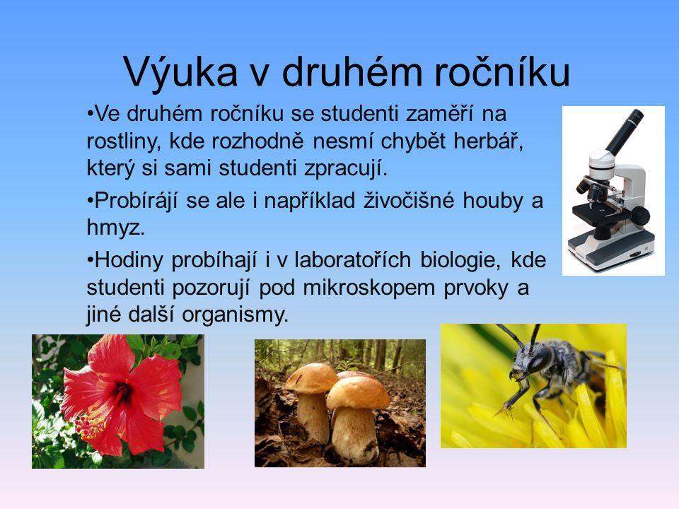 Výuka v druhém ročníku •Ve druhém ročníku se studenti zaměří na rostliny, kde rozhodně nesmí chybět herbář, který si sami studenti zpracují. •Probíráj