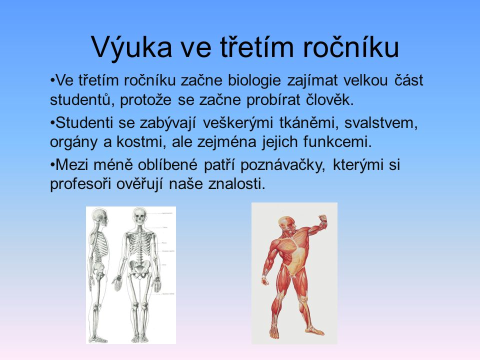 Výuka ve třetím ročníku •Ve třetím ročníku začne biologie zajímat velkou část studentů, protože se začne probírat člověk. •Studenti se zabývají vešker