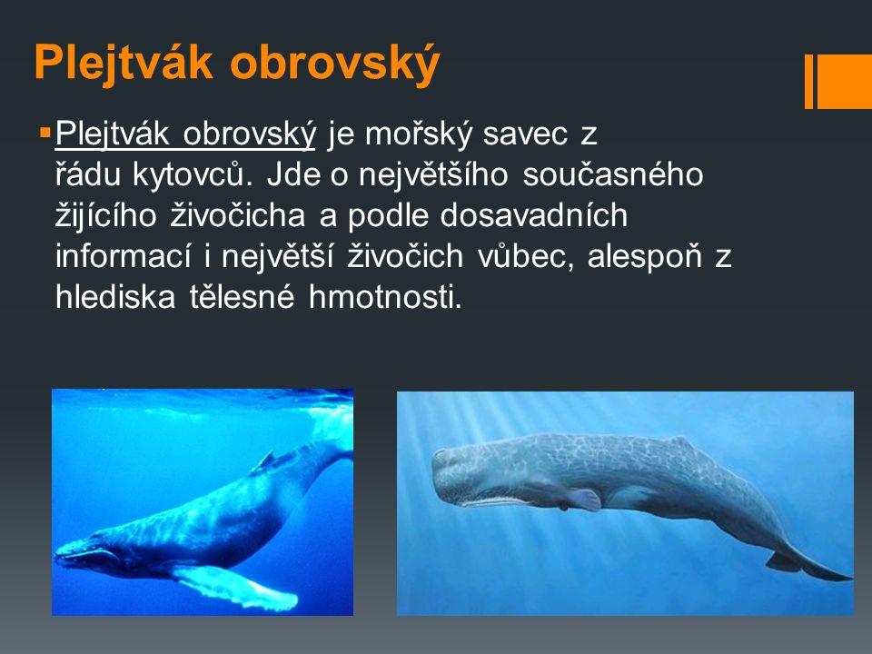 Ohrožení velryb  Lov velryb je druh mořského rybolovu, během kterého jsou velrybářskou flotilou loveni velcí mořští savci (velryby, plejtváci apod.).