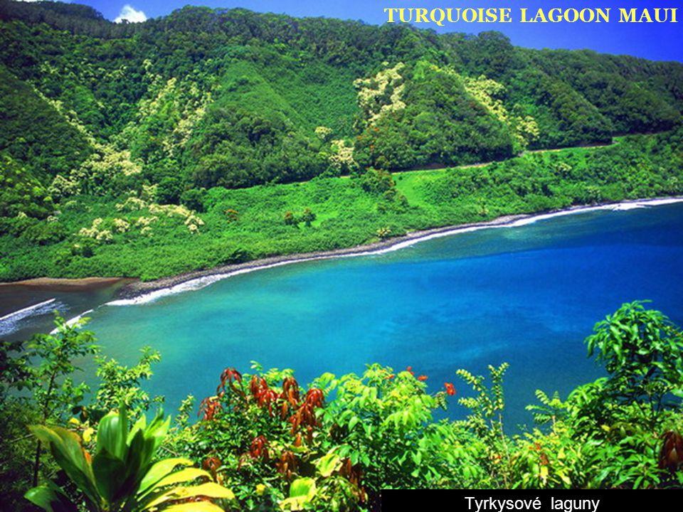 IAO VALLEY - MAUI Iao Valley je údolí na západním Maui. Vzhledem k jeho přírodním krásám, bujné vegetaci i historickému významu se stalo populární tur