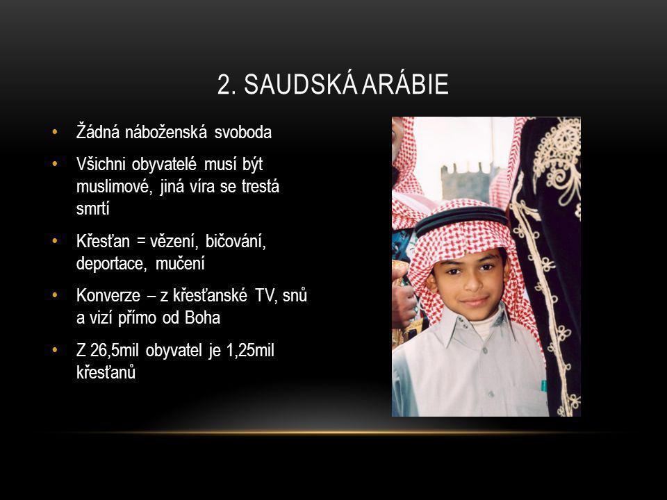 • 10-letá Jessica Boulos – zastřelena 6.srpna na cestě z nedělní školy • 7 křesťanů zabito 14.