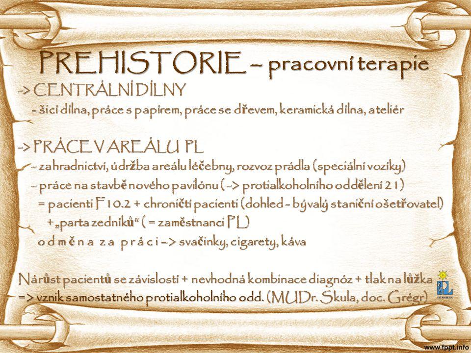 PREHISTORIE – pracovní terapie -> CENTRÁLNÍ DÍLNY - šicí dílna, práce s papírem, práce se d ř evem, keramická dílna, ateliér - šicí dílna, práce s pap