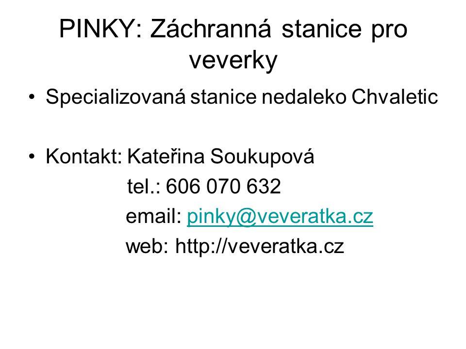PINKY: Záchranná stanice pro veverky •Specializovaná stanice nedaleko Chvaletic •Kontakt: Kateřina Soukupová tel.: 606 070 632 email: pinky@veveratka.