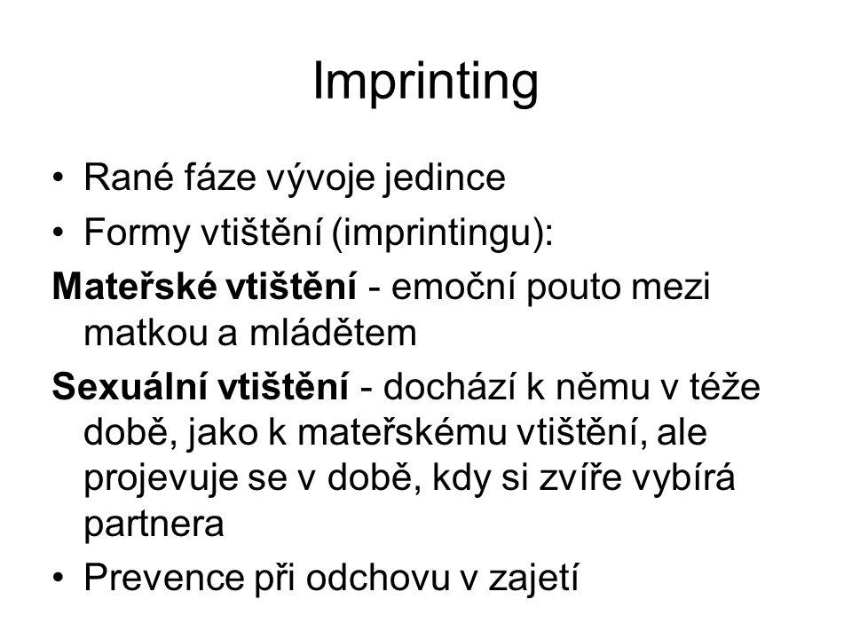 Imprinting •Rané fáze vývoje jedince •Formy vtištění (imprintingu): Mateřské vtištění - emoční pouto mezi matkou a mládětem Sexuální vtištění - docház