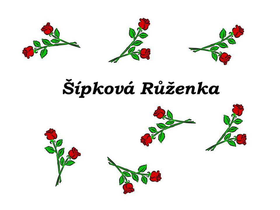 …prosekal se trním a polibkem Růženku probudil a s ní i celý zámek…