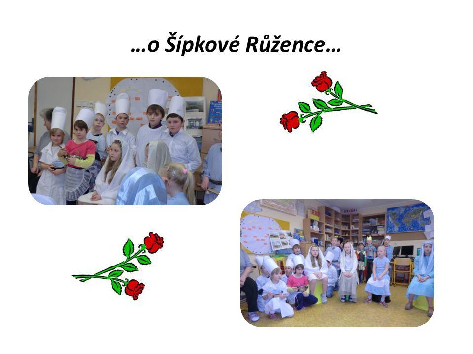 …o Šípkové Růžence…