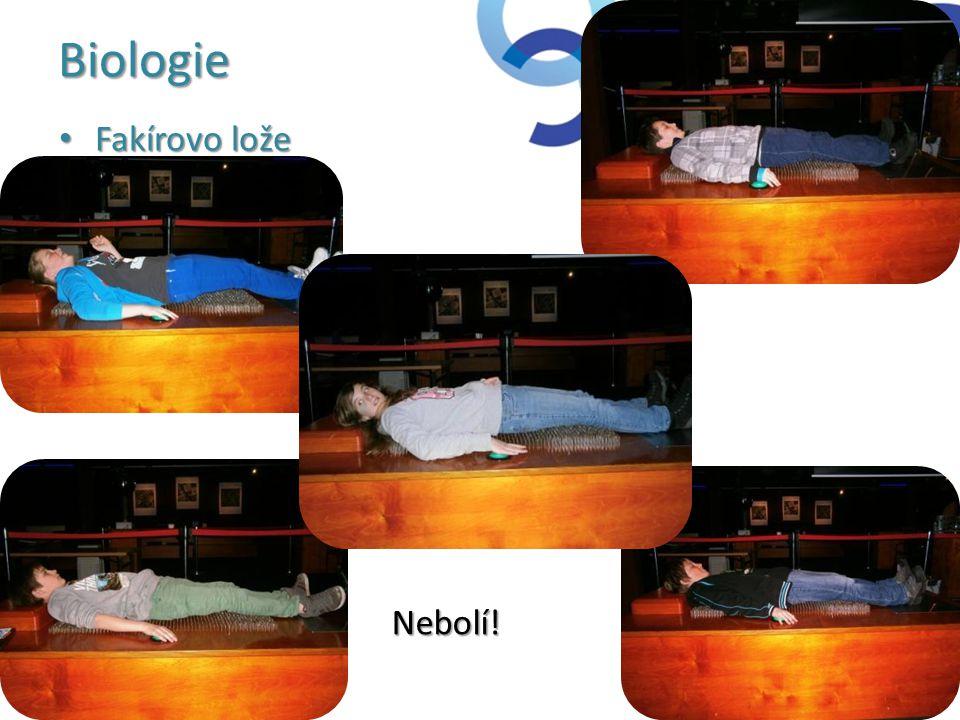 Biologie • Fakírovo lože Nebolí!