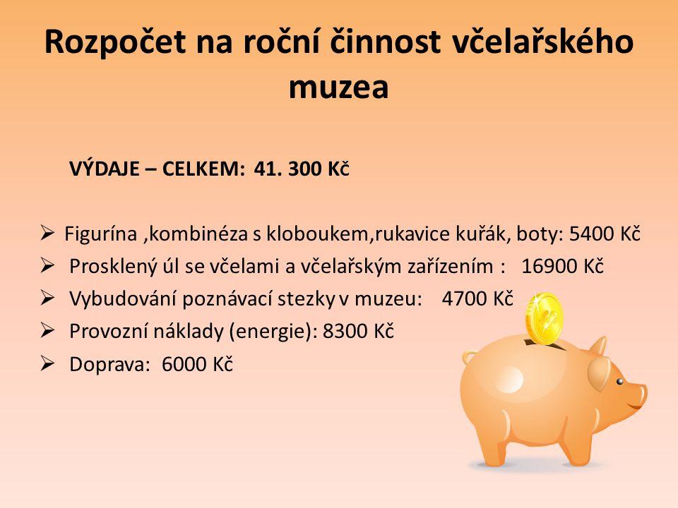 Rozpočet na roční činnost včelařského muzea VÝDAJE – CELKEM: 41. 300 K Č  Figurína,kombinéza s kloboukem,rukavice kuřák, boty: 5400 Kč  Prosklený úl