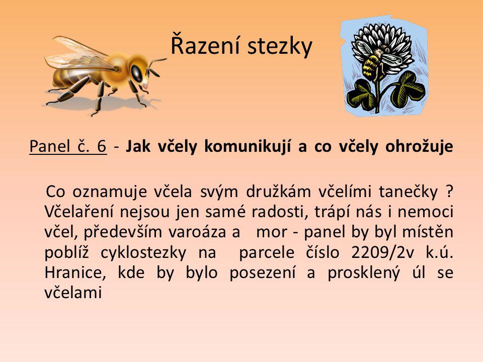 Řazení stezky Panel č. 6 - Jak včely komunikují a co včely ohrožuje Co oznamuje včela svým družkám včelími tanečky ? Včelaření nejsou jen samé radosti
