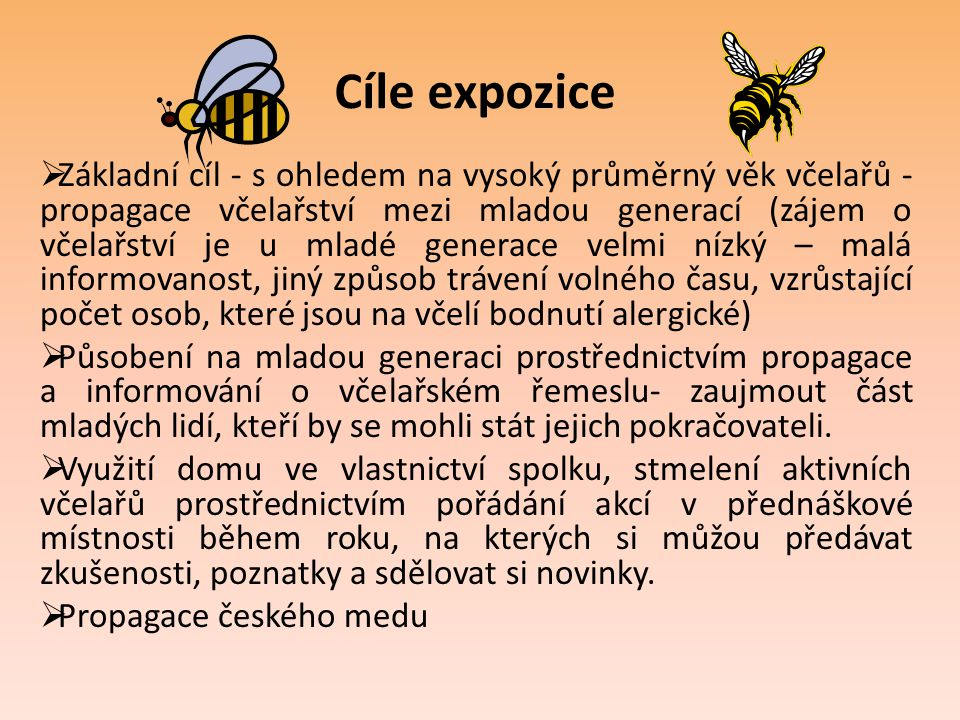 Cíle expozice  Základní cíl - s ohledem na vysoký průměrný věk včelařů - propagace včelařství mezi mladou generací (zájem o včelařství je u mladé gen