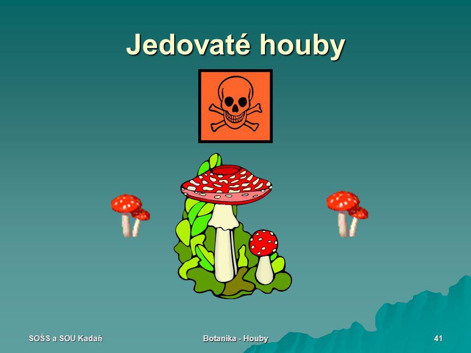 SOŠS a SOU Kadaň Botanika - Houby 41 Jedovaté houby