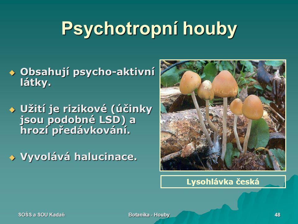 SOŠS a SOU Kadaň Botanika - Houby 48 Psychotropní houby  Obsahují psycho-aktivní látky.  Užití je rizikové (účinky jsou podobné LSD) a hrozí předávk