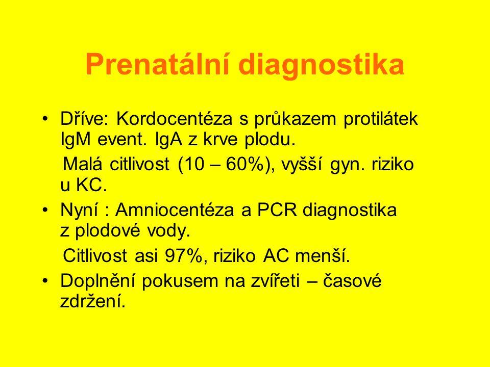 Prenatální diagnostika •Dříve: Kordocentéza s průkazem protilátek IgM event. IgA z krve plodu. Malá citlivost (10 – 60%), vyšší gyn. riziko u KC. •Nyn