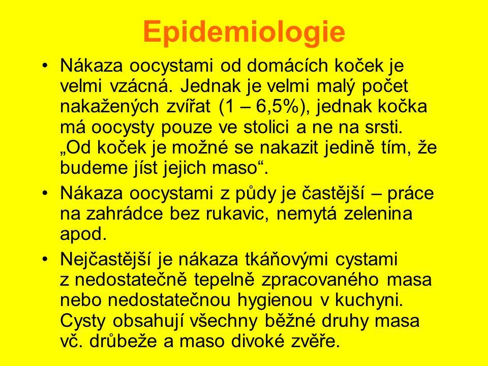 Epidemiologie •Nákaza oocystami od domácích koček je velmi vzácná. Jednak je velmi malý počet nakažených zvířat (1 – 6,5%), jednak kočka má oocysty po