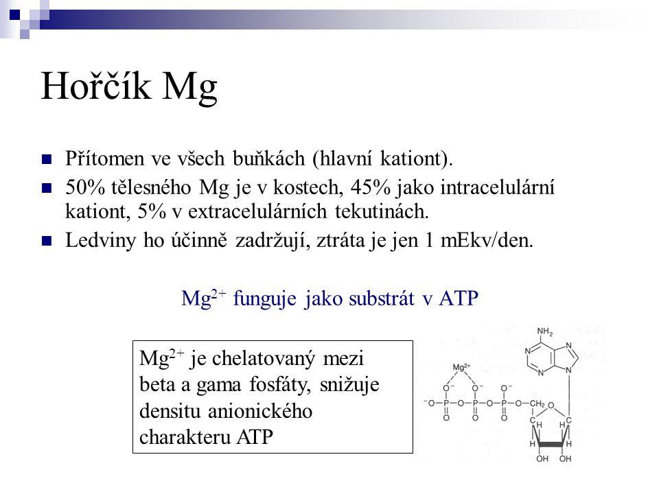 Hořčík Mg  Přítomen ve všech buňkách (hlavní kationt).  50% tělesného Mg je v kostech, 45% jako intracelulární kationt, 5% v extracelulárních tekuti