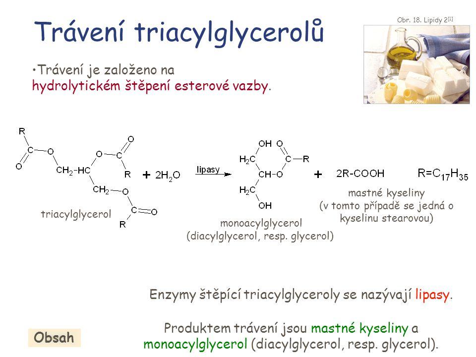Trávení triacylglycerolů •Trávení je založeno na hydrolytickém štěpení esterové vazby. triacylglycerol mastné kyseliny (v tomto případě se jedná o kys