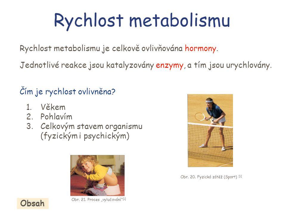 Rychlost metabolismu Rychlost metabolismu je celkově ovlivňována hormony. Jednotlivé reakce jsou katalyzovány enzymy, a tím jsou urychlovány. Čím je r