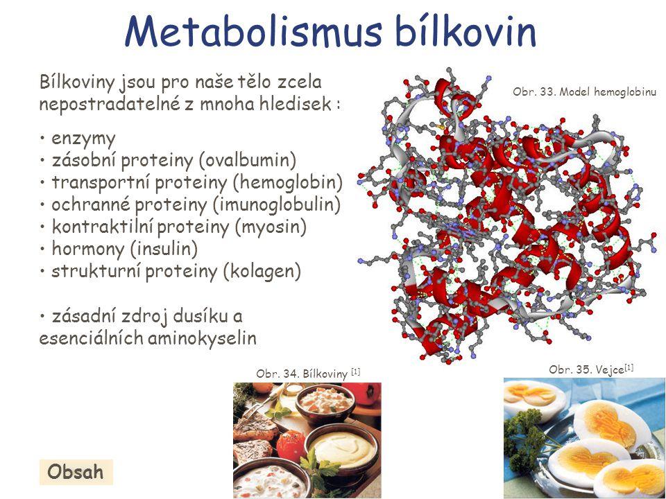 Metabolismus bílkovin Bílkoviny jsou pro naše tělo zcela nepostradatelné z mnoha hledisek : • enzymy • zásobní proteiny (ovalbumin) • transportní prot