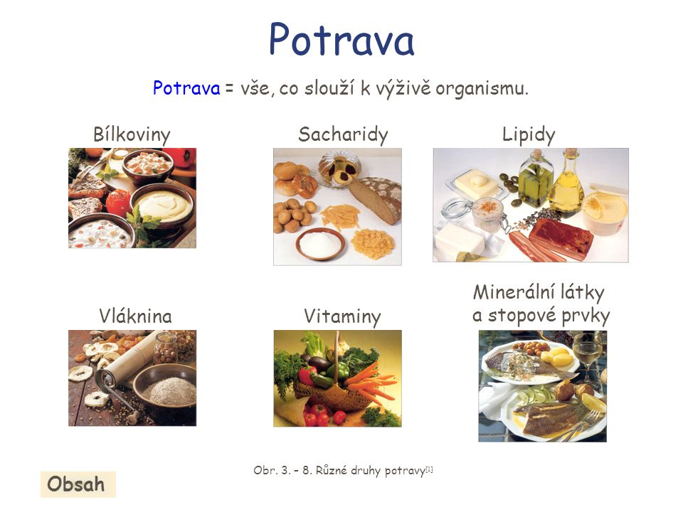 Potrava BílkovinySacharidyLipidy Vláknina Minerální látky a stopové prvky Vitaminy Obr. 3. – 8. Různé druhy potravy [1] Obsah Potrava = vše, co slouží