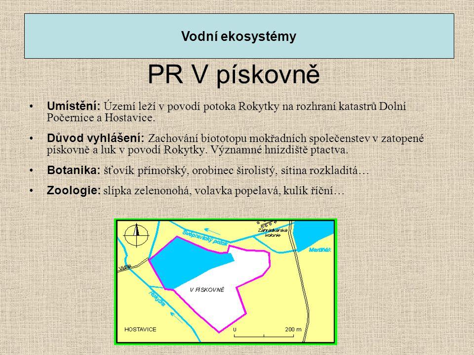 PR V pískovně •Umístění: Území leží v povodí potoka Rokytky na rozhraní katastrů Dolní Počernice a Hostavice. •Důvod vyhlášení: Zachování biototopu mo