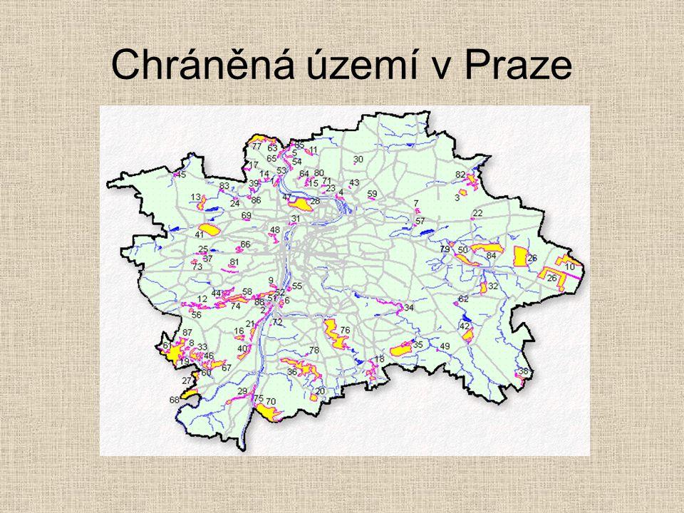 Vybraná chráněná území V Praze se nacházejí tyto typy chráněných území: •Paleontologicky a geologicky významná •Skalní stepi a stepi •Zachovalé lesy •Mokřadní ekosystémy •Vřesoviště a luční ekosystémy Na následujících stránkách představujeme různé zástupce chráněných území Prahy