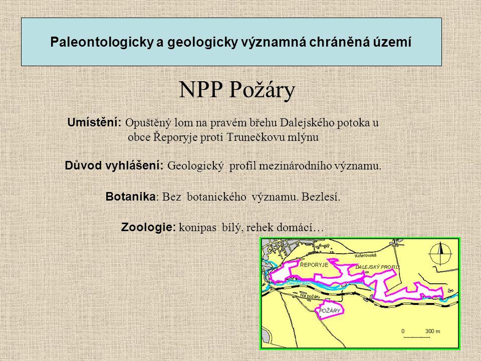 NPP Požáry Umístění: Opuštěný lom na pravém břehu Dalejského potoka u obce Řeporyje proti Trunečkovu mlýnu Důvod vyhlášení: Geologický profil mezináro