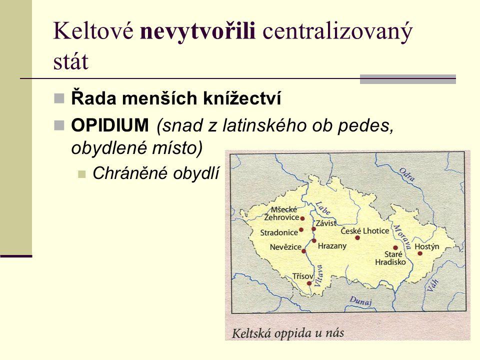 Keltové nevytvořili centralizovaný stát  Řada menších knížectví  OPIDIUM (snad z latinského ob pedes, obydlené místo)  Chráněné obydlí