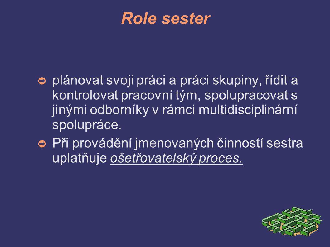 Role sester ➲ plánovat svoji práci a práci skupiny, řídit a kontrolovat pracovní tým, spolupracovat s jinými odborníky v rámci multidisciplinární spolupráce.