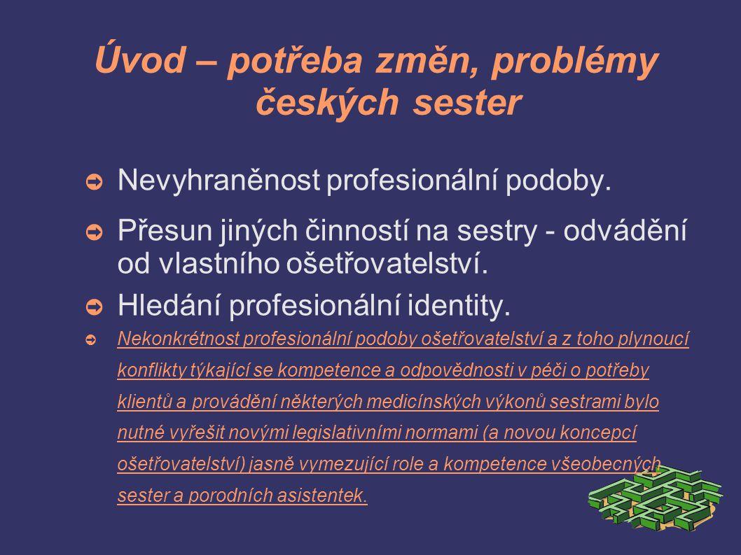 Úvod – potřeba změn, problémy českých sester ➲ Nevyhraněnost profesionální podoby.