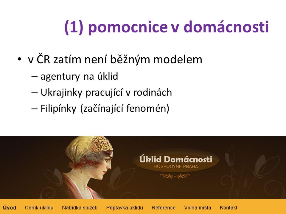 (1) pomocnice v domácnosti • v ČR zatím není běžným modelem – agentury na úklid – Ukrajinky pracující v rodinách – Filipínky (začínající fenomén)