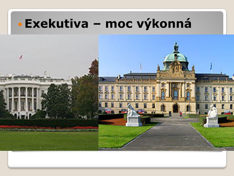  Prezident - je jediným ústavou daným držitelem výkonné moci, což znamená, že jmenuje členy vlády a všechny úředníky X  Prezident republiky a vláda - Vláda je odpovědna Poslanecké sněmovně - Prezident je volen Parlamentem na společné schůzi obou komor na dobu 5 let