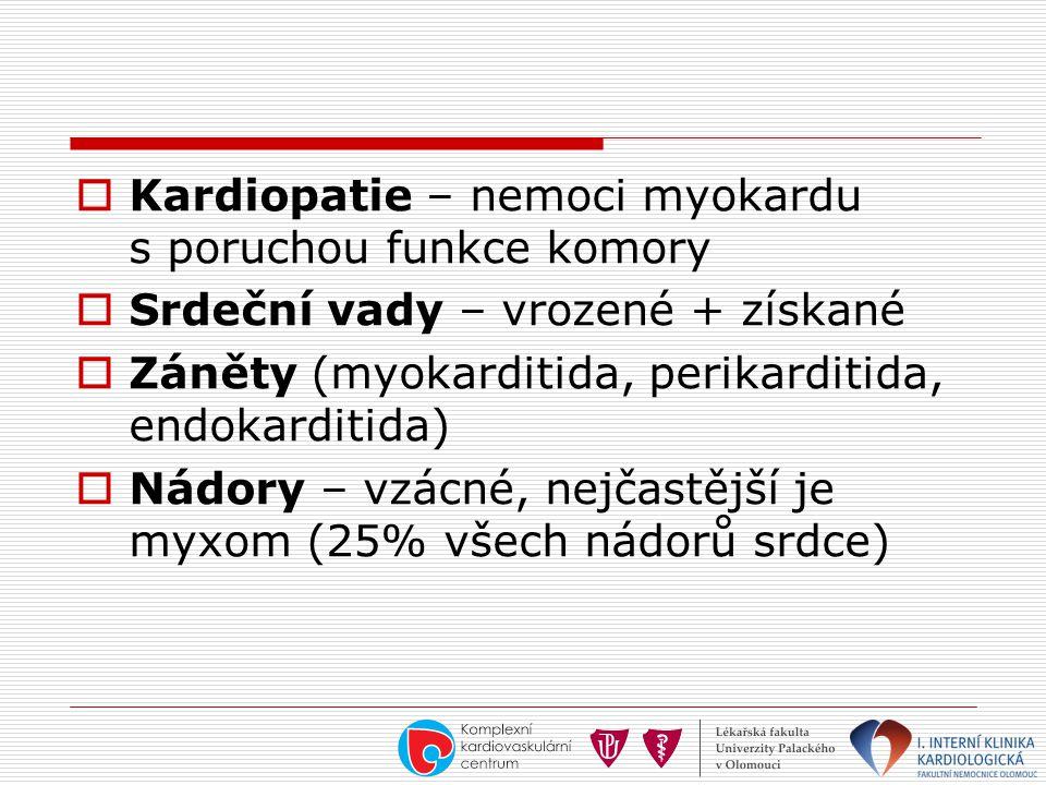  Kardiopatie – nemoci myokardu s poruchou funkce komory  Srdeční vady – vrozené + získané  Záněty (myokarditida, perikarditida, endokarditida)  Ná