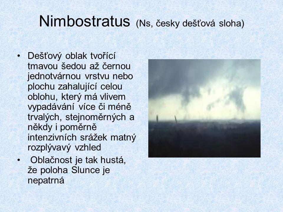 Nimbostratus (Ns, česky dešťová sloha) •Dešťový oblak tvořící tmavou šedou až černou jednotvárnou vrstvu nebo plochu zahalující celou oblohu, který má