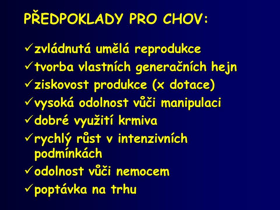 REPRODUKCE:  Pozdní pohlavní dospělost (A.ruthenus x H.