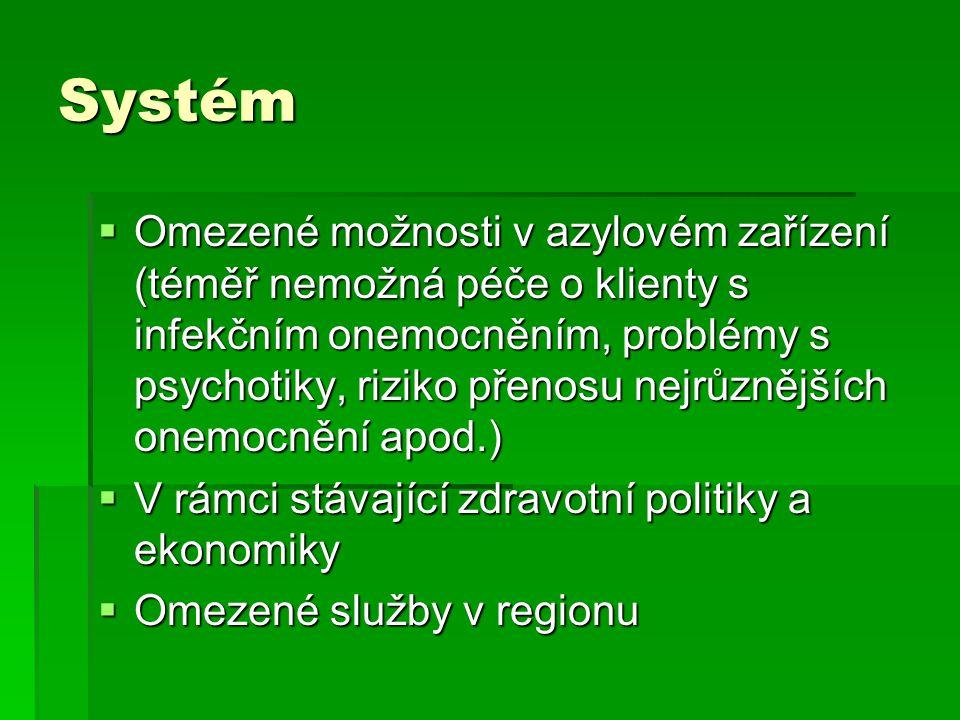 Systém  Omezené možnosti v azylovém zařízení (téměř nemožná péče o klienty s infekčním onemocněním, problémy s psychotiky, riziko přenosu nejrůznějších onemocnění apod.)  V rámci stávající zdravotní politiky a ekonomiky  Omezené služby v regionu