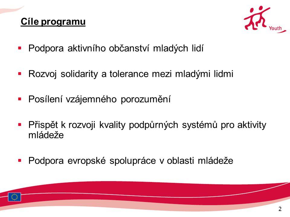 2 Cíle programu  Podpora aktivního občanství mladých lidí  Rozvoj solidarity a tolerance mezi mladými lidmi  Posílení vzájemného porozumění  Přispět k rozvoji kvality podpůrných systémů pro aktivity mládeže  Podpora evropské spolupráce v oblasti mládeže