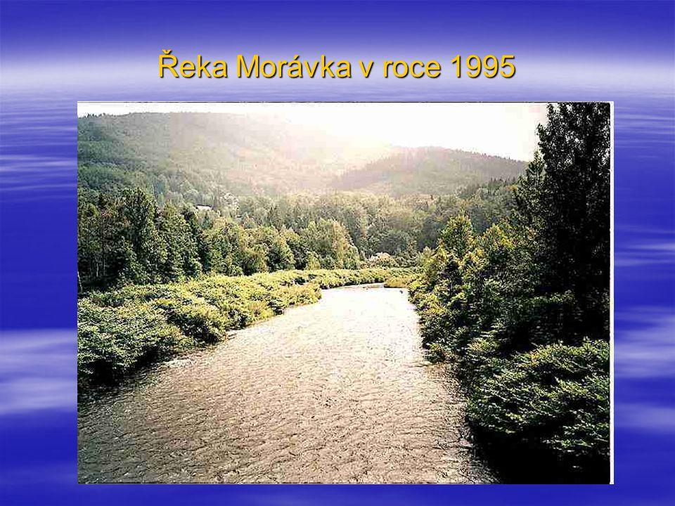 Řeka Morávka v roce 1995