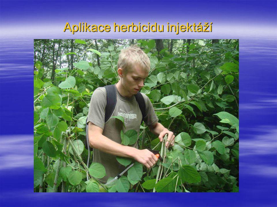 Aplikace herbicidu injektáží