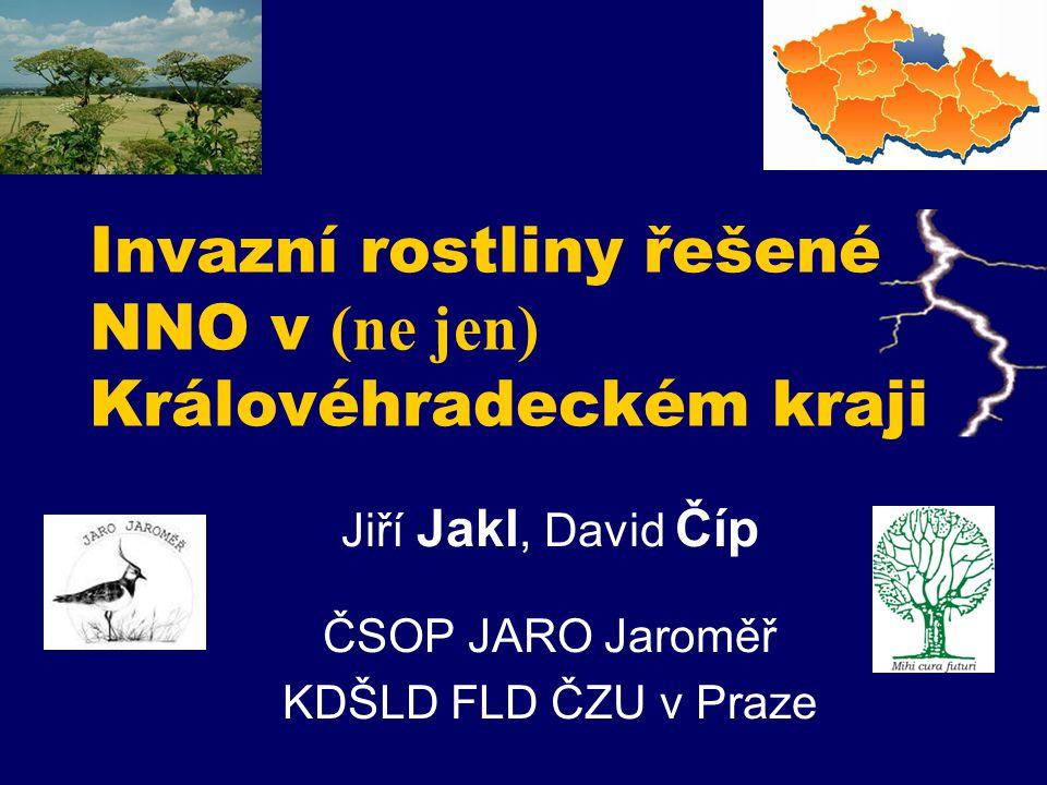 Invazní rostliny řešené NNO v (ne jen) Královéhradeckém kraji Jiří Jakl, David Číp ČSOP JARO Jaroměř KDŠLD FLD ČZU v Praze