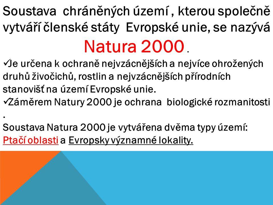 Ptačí oblasti jsou vymezovány podle výskytu chráněných druhů ptáků uvedených v evropské směrnici o ochraně volně žijících ptáků, nebo jako shromaždiště (hnízdiště či zimoviště) ptáků libovolného druhu v počtu vyšším než 10 000.