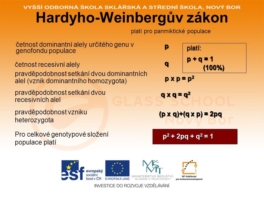 Hardy – Weinbergův zákon •HW zákon formulovali nezávisle na sobě anglický matematik G.